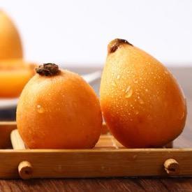 攀枝花枇杷中果 大果 2斤/3斤/5斤(普箱、保温箱)攀枝花米易五星枇杷 攀枝花枇杷甜枇杷